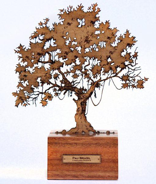 Escultura Arvore Pau Brasil M
